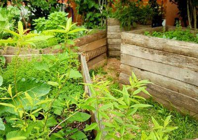 Horta ecológica no pátio.